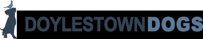 DoylestownDogs, LLC